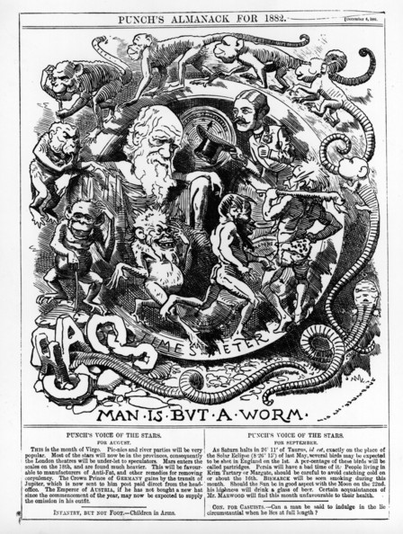 Worm Man British naturalist Charles Robert Darwin (1809 - 1882) pictured in a Punch cartoon entitled 'Man Is But A Worm', a spoof on the theory of evolution. Punch - pub. 1882   (Photo by Hulton Archive/Getty Images)  -- Image Date: 01/01/1882  -- Image Date: 01/01/1882