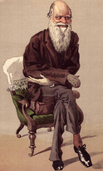 30th September 1871:  English naturalist Charles Darwin (1809 - 1882) propped up on two cushions and in the wheeled chair he used for propelling himself round his work room.  Vanity Fair - No 152 - Men of the Day No 33 - 'Natural Selection' - pub. 1871 Original Artwork: Cartoon by 'Coide'.  (Photo by Hulton Archive/Getty Images)  -- Image Date: 9/30/1871  -- Image Date: 9/30/1871