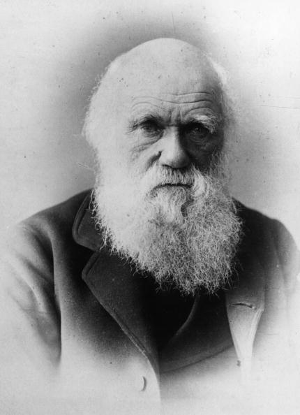 circa 1875:  British naturalist and writer of 'The Theory of Evolution' Charles Robert Darwin (1809 - 1882).  (Photo by General Photographic Agency/Getty Images)  -- Image Date: 1/1/1875  -- Image Date: 1/1/1875