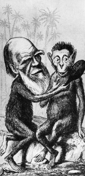 circa 1860:  British naturalist Charles Darwin (1809 - 1882) depicted with an ape's body while holding a mirror up to another ape.  London Sketch Book  (Photo by Hulton Archive/Getty Images)  -- Image Date: 1/1/1860  -- Image Date: 1/1/1860
