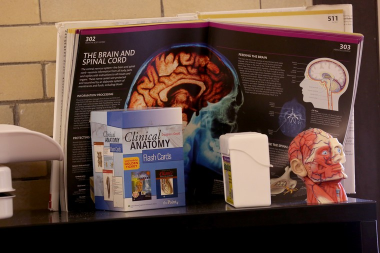 Teaching tools for the health science class at Sullivan High School. (Nancy Stone/Chicago Tribune/TNS)